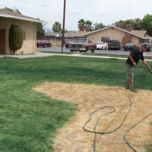 Lawn-Paint-622x400